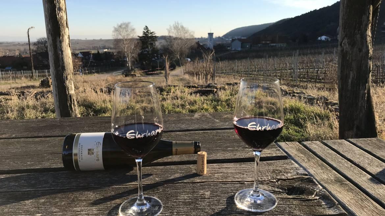 Der Pandemie mit gutem Wein trotzen – jetzt ab 18 Flaschen versandkostenfrei bestellen!